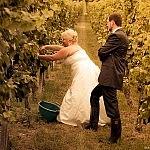 Hochzeitsshooting im Zabergäu