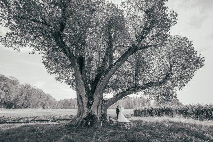 Hochzeitsreportage Simone & Benno – Schloss Assumstadt