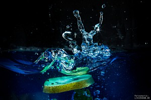 Splash Fruits 3